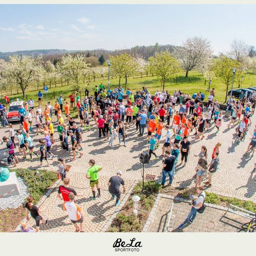 Liwa Lauf 2017