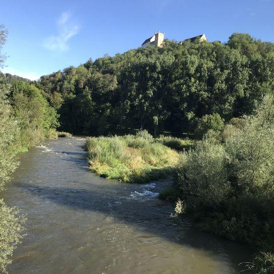 Fotos vom Neckarlauf
